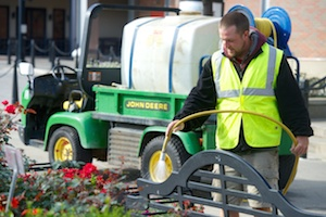 Integrated Pest Management: A Sustainable Way To Fight Landscape Disease