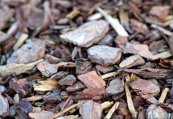 some types of mulch break down and nourish the soil