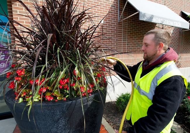 landscaping with ornamental grasses includes large planters