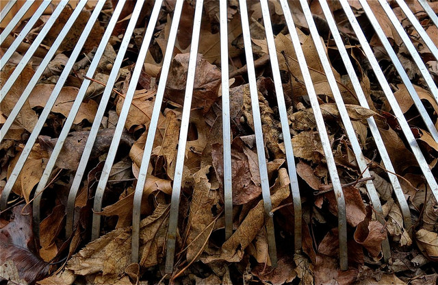 leaf removal gives a property a polished appearance