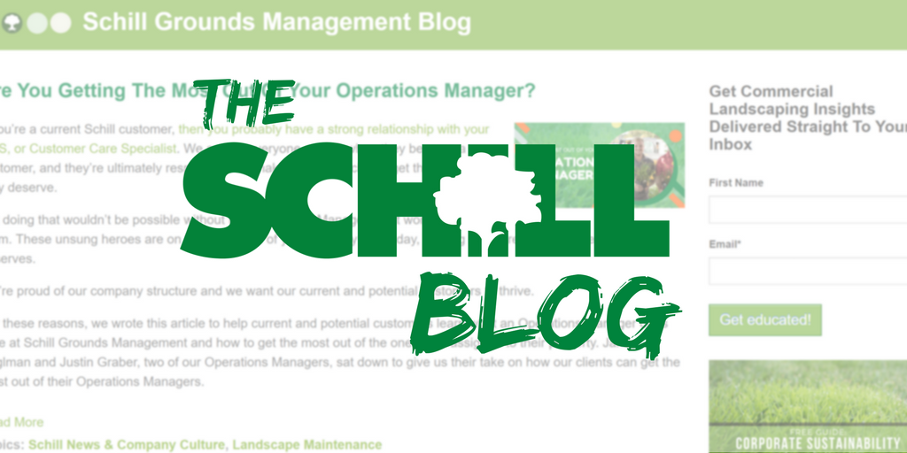 the schill landscaping and snow removal blog