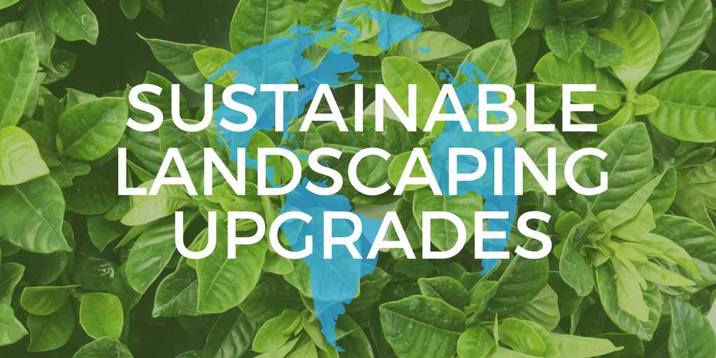 Sustainable Landscaping Upgrades.png