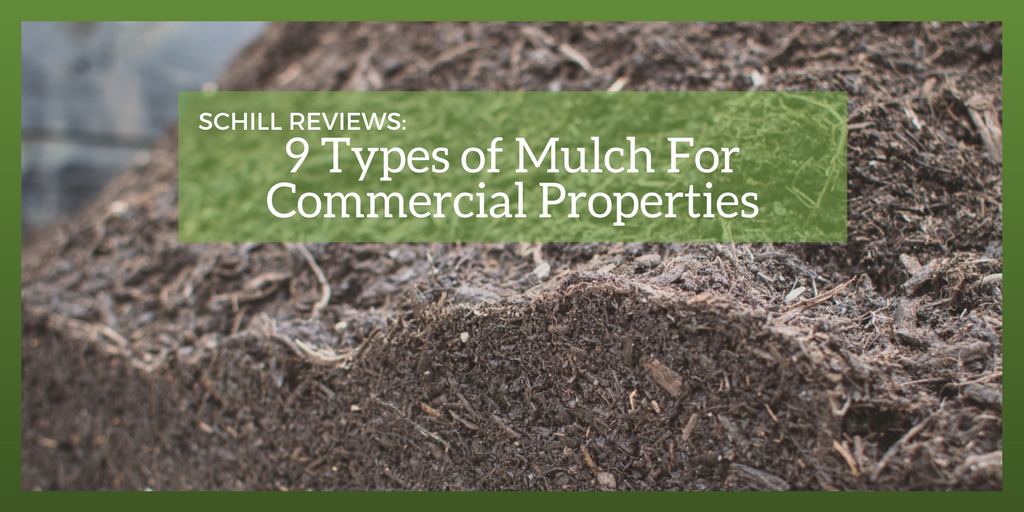 We Review 9 Types Of Mulch For Commercial Landscapes