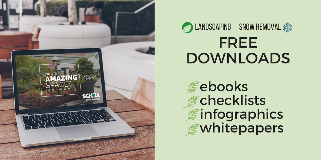 free downloads on landscaping and snow removal, ebooks, checklists, infographics, whitepapers