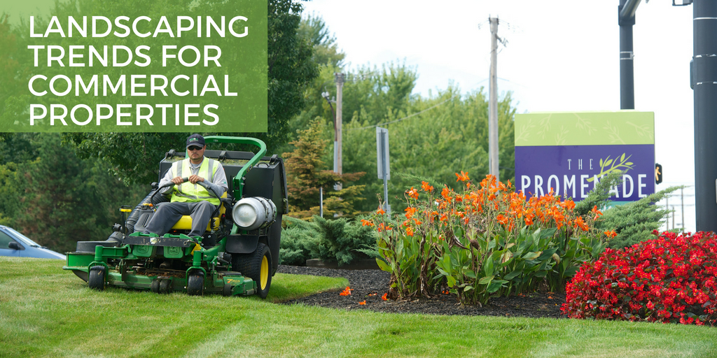 landscaping trends for commercial properties