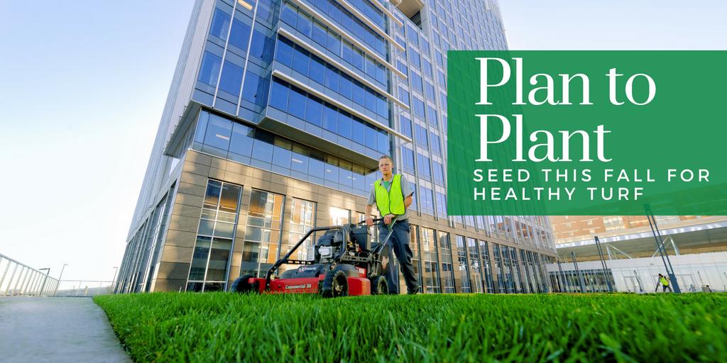 plan to plant