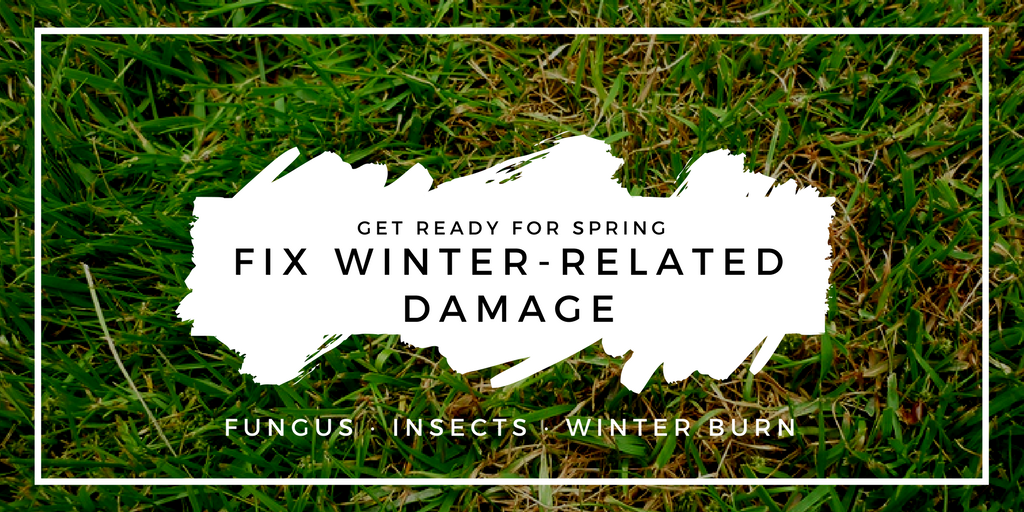 winter damage.png