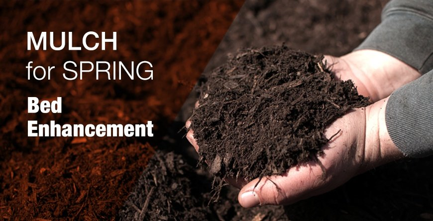 Spring Mulch Blog