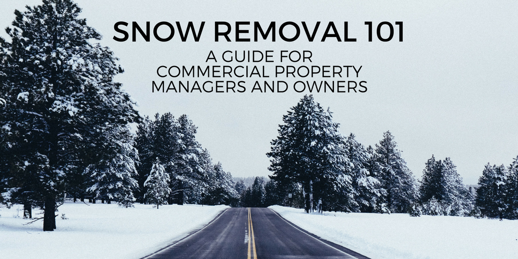 snow removal 101, a guide for property managers and owners
