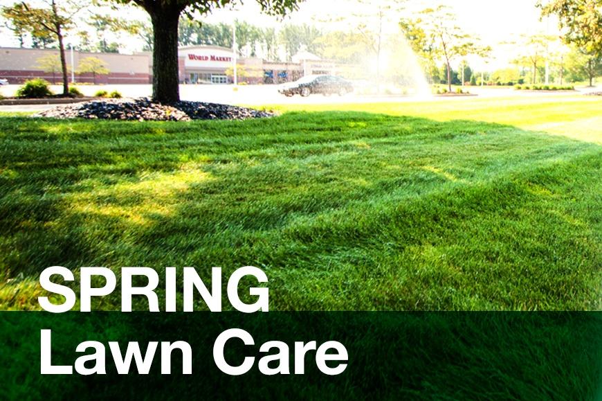 spring-lawn.jpg