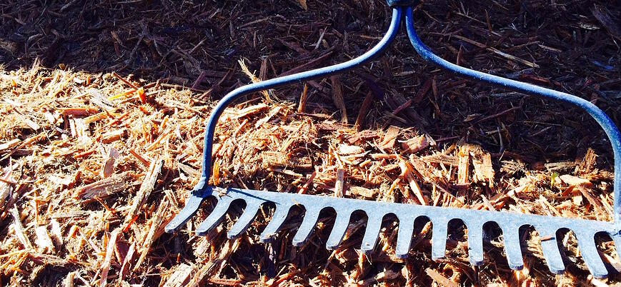mulch insulates and softens the impact of fluctuating temperatures on your commercial landscape