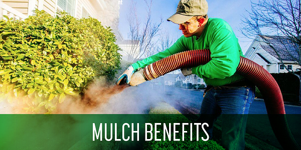 Benefits_of_mulch_landscaping