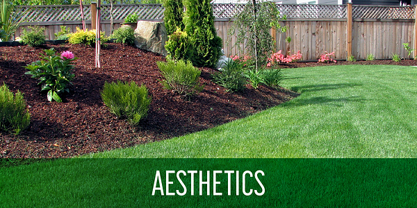 mulch_benefits_aesthetics_landscaping