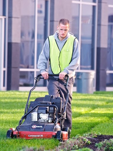 Push or walk-behind mowers used on commercial properties offer a landscape team mowing flexibility.