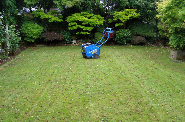 lawn aeration is one commercial lawn care service you should not overlook in Northeast Ohio