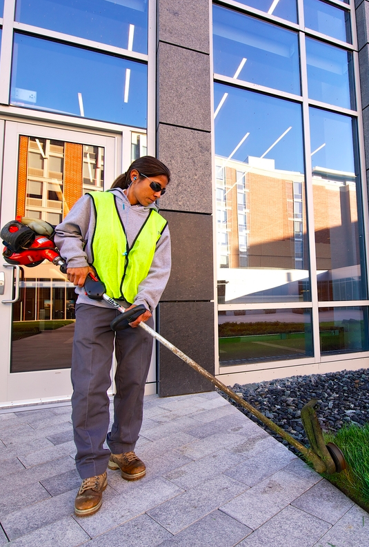 commercial property managers who have had bi-weekly edging in the past are usually disappointed with monthly edging because their properties lose that manicured look
