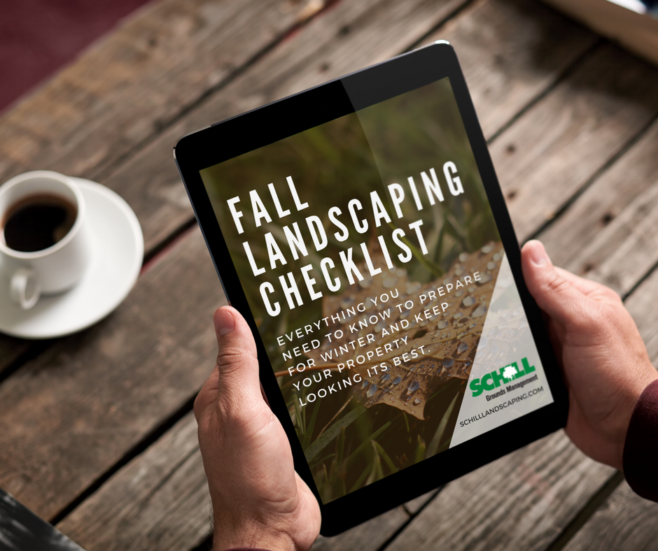 fb fall landscaping pic.png