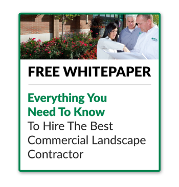 FREE Guide: How To Hire The Best Commercial Landscaping Company