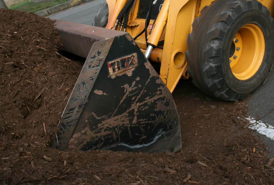 knowing when to mulch will improve the look and health of your landscaping
