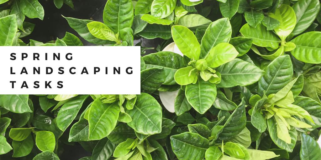 spring landscaping tasks (1)