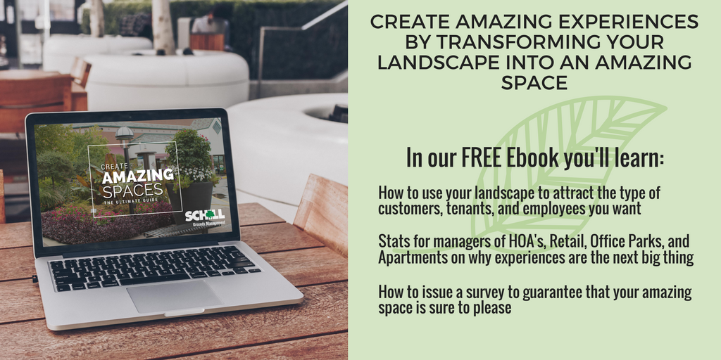 Transform your landscape into an amazing space with this free ebook