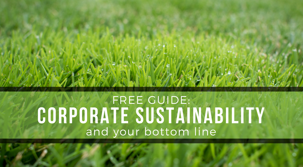 Get our FREE position paper on corporate sustainability