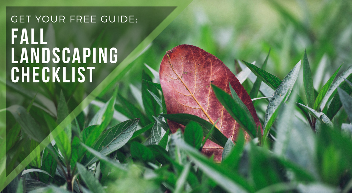 fall landscaping checklist