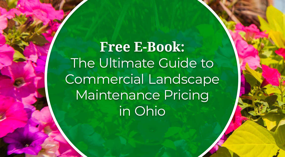 The Ultimate Guide to Commercial Landscape Maintenance Pricing in Ohio