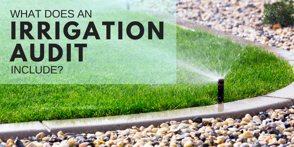 what does an irrigation audit include