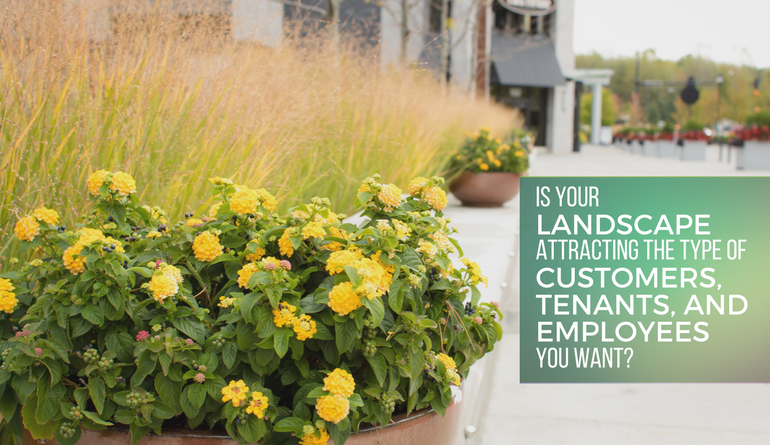 enhancement ebook create amazing spaces with your landscape