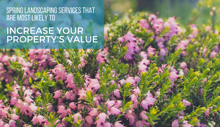spring landscaping services that are most likely to increase your property's value