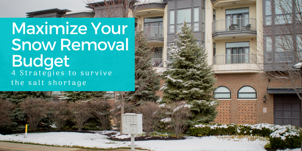 Maximize Your Snow Removal Budget