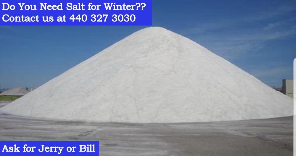 SaltAdWebsite