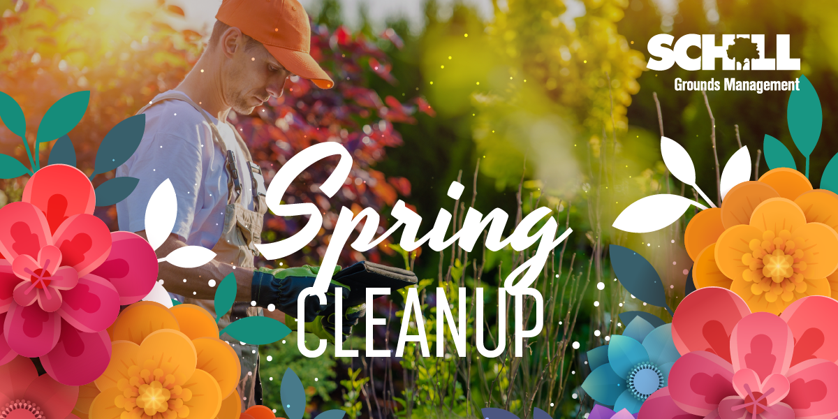 Schill Spring Cleanup Blog_COVER