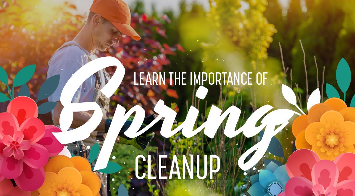 Schill Web Slider Spring_Spring