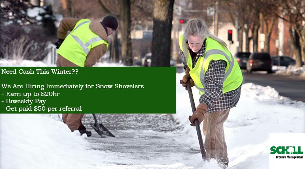 Snow-Shovelers-Slide