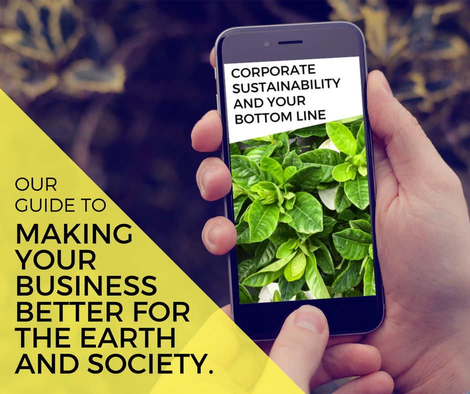 sustainability guide