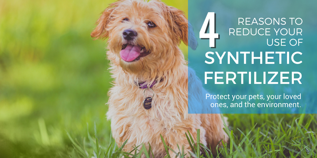 reasons to reduce your use of synthetic fertilizer